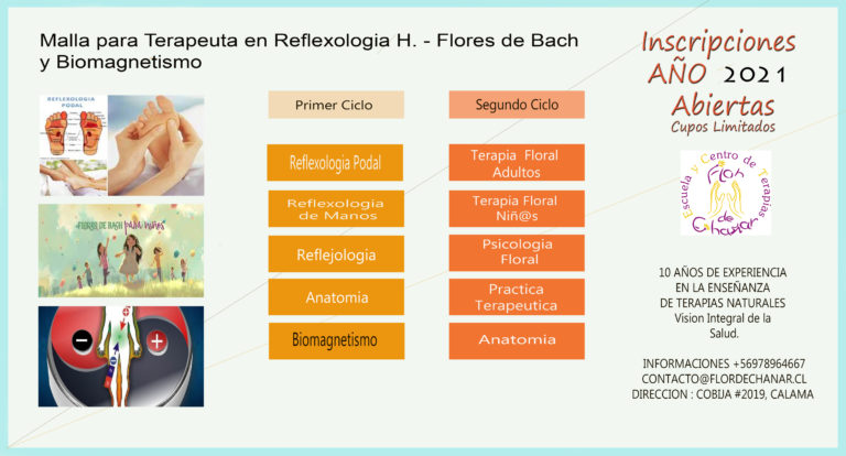 terapiaanualmallaReflexofloresbio2021
